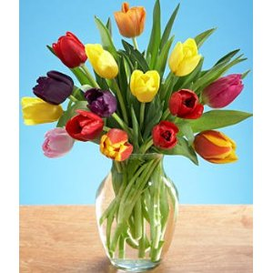 Mothers Day Gifts under 20 - Flowers