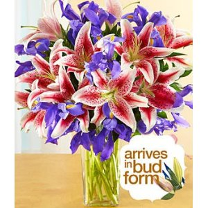 Mothers Day Gifts Under 30 - Flowers